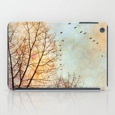 January iPad Case