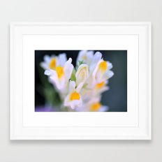 Darling Buds Framed Art Print