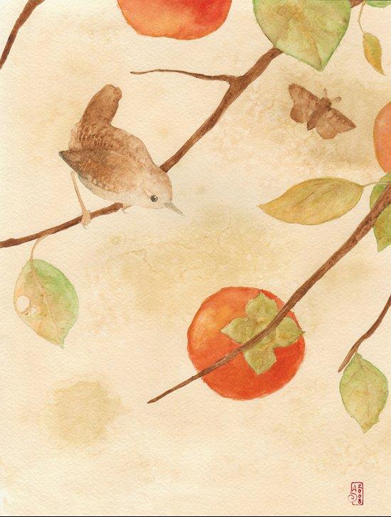 Winter Wren Canvas Print