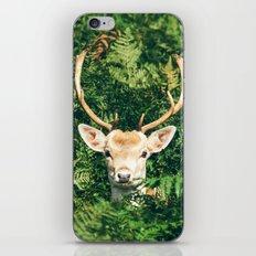 Deer behind Leaves iPhone & iPod Skin