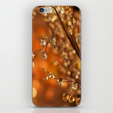 Sparkles in Gold iPhone & iPod Skin