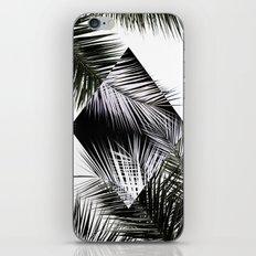 Palm Leaves 3 Geometry iPhone & iPod Skin