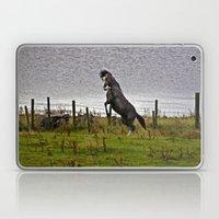 welsh pony 6 Laptop & iPad Skin