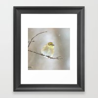 Winter American Goldfinc… Framed Art Print