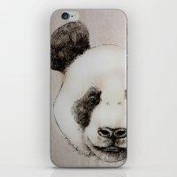 balsa panda iPhone & iPod Skin