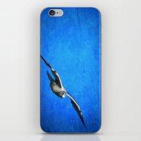 Winter Nomad iPhone & iPod Skin