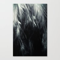 Sterling Feathers Canvas Print