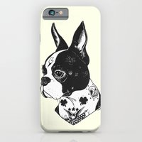 iPhone & iPod Case featuring Dog - Tattooed BostonTerrier by PaperTigress