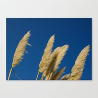 A soft breeze, against a cobalt sky. Canvas Print