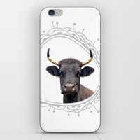 Yellow Horns iPhone & iPod Skin