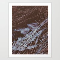 autumn breathes with winter Art Print