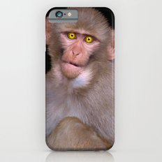 Young Rhesus Macaque Paintover Effect iPhone 6 Slim Case