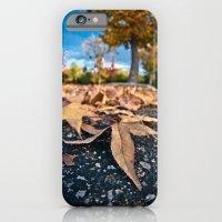 Fisheye Autumn  iPhone 6 Slim Case