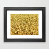 Golden Wheat Framed Art Print
