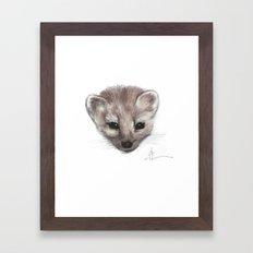 Pine Marten Framed Art Print