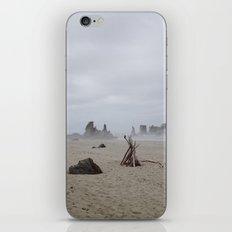 Bandon Beach Bird iPhone & iPod Skin