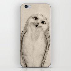 Snowy Owl Sketch iPhone & iPod Skin