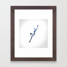 Phaeton Framed Art Print
