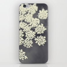 Black and White Queen Annes Lace iPhone & iPod Skin