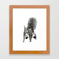 Pesky Squirrel Framed Art Print