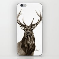 Heart Of The Hunted iPhone & iPod Skin