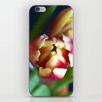 Symphony of Spring  iPhone & iPod Skin