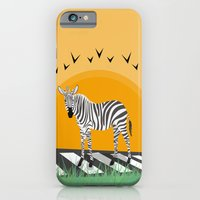 zebra iPhone & iPod Cases featuring Zebra by Nir P