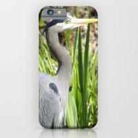 Blue Heron iPhone 6 Slim Case