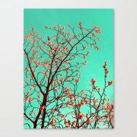 spring tree XXI Canvas Print