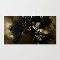 Palm Reaching To The Storm Canvas Print