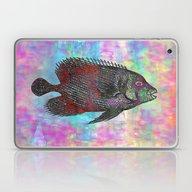 Fish Q Laptop & iPad Skin