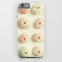 Sea Urchin Collection iPhone 6 Slim Case