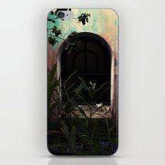 window to where iPhone & iPod Skin