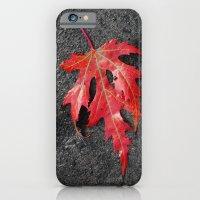 red maple leaf iPhone 6 Slim Case