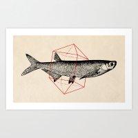 Fish In Geometrics II Art Print