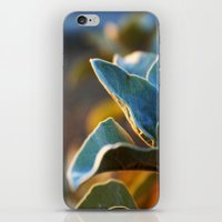 Desert Leaves iPhone & iPod Skin