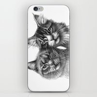 Cats in Love G134 iPhone & iPod Skin