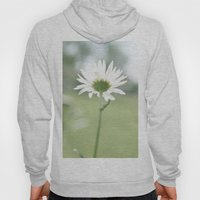 Boxed faith Daisy Hoody