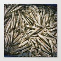Fish Tide Canvas Print