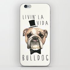 English Bulldog - livin' la vida bulldog iPhone & iPod Skin
