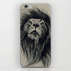 Fabulous iPhone & iPod Skin