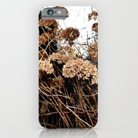 iPhone & iPod Case featuring bronze by chismau