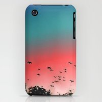 iPhone 3Gs & iPhone 3G Cases featuring Birds Flying High by Ben Geiger