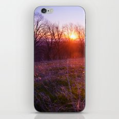 High and Low iPhone & iPod Skin