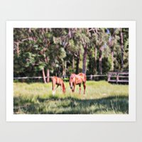 Horse And Foal Feeding I… Art Print