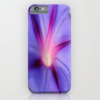 Close Up of A Morning Glory Purple and Pink Flower iPhone 6 Slim Case