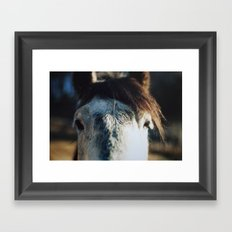 neighsayers Framed Art Print
