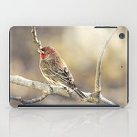 Rosy Little Finch iPad Case