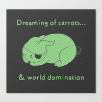 Dreaming of carrots Canvas Print