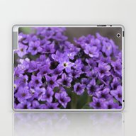 Laptop & iPad Skin featuring Spring Flowers Series 59 by Sarah Shanely Photog…